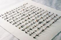 Cui Fei, Read by Touch