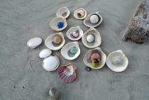 Objects being collected for �Sandstars� (2012) on Isla Arena, Baja California, Mexico. � Gabriel Orozco 2012