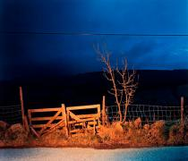 Gerard Byrne, A country road, a tree, evening: Glencullen, between Boranaraltry Bridge and Johnnie Fox's, 2006. © Gerard Byrne. Deutsche Bank Collection