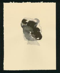 Lorna Simpson, Head B, 2008. Courtesy of the artist and Salon 94.© Lorna Simpson, 2012.All rights reserved.