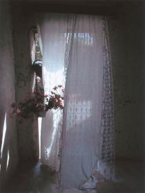 Mohamed Camara, Chambre malienne no 20. Ma cousine Sounouba me tend des fleurs, 2002. Deutsche Bank Collection. Courtesy Galerie Pierre Brullé, Paris